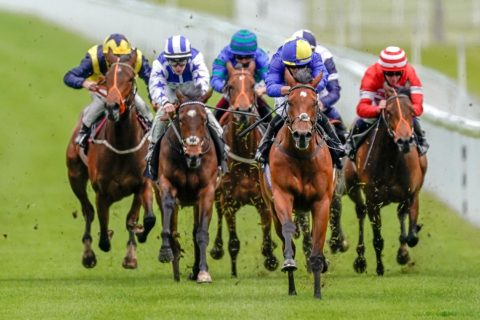 Glorious Goodwood Best Bets, Bookmaker Offers