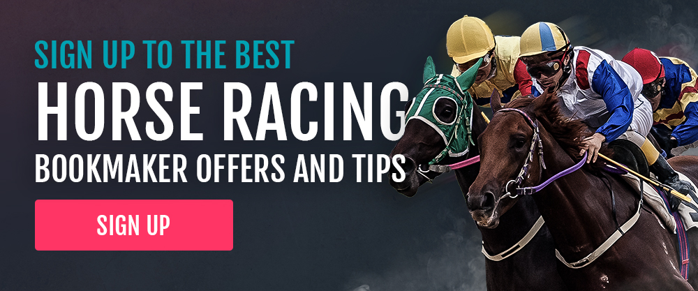 york races betting tips