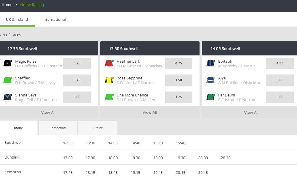 horse racing at netbet